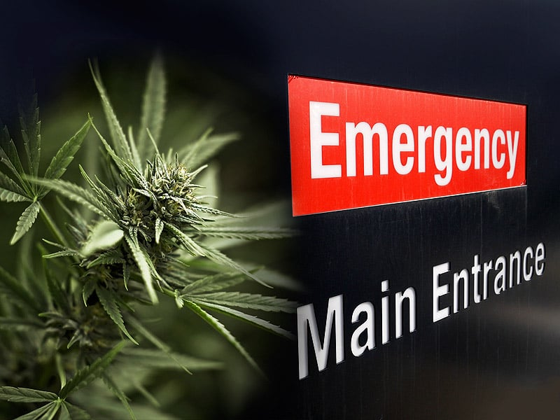 VIDEO–Cannabis in the Emergency Room