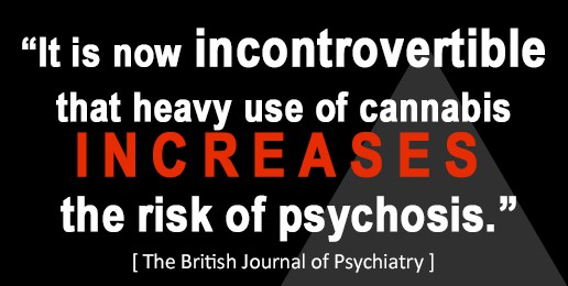Cannabis Increases Risk of Pychosis, says British Journal of Psychiatry