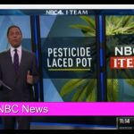 VIDEO-Pesticides and Marijuana