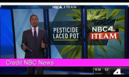 VIDEO-Pesticides and Marijuana