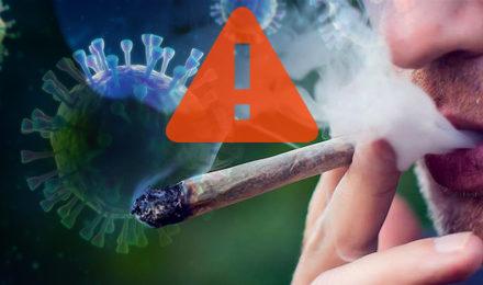 Doctors Warn of Link Between Marijuana and Bad COVID-19 Symptoms
