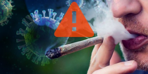 Doctors Warn of Link Between Marijuana and Bad COVID-19 Symptoms